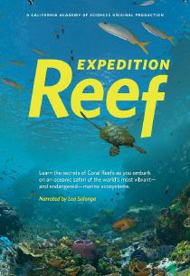 "Poster ""Expedition Reef"""