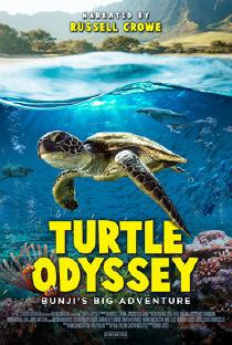 "Poster ""Turtle Odyssey"""